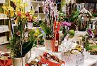 Pflanzen und Geschenke vom Blumenhof Pein