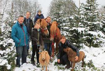 Mit dem Pony über den Naturlandhof